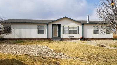 Portales Manufactured Home For Sale: 790a S Roosevelt Rd S