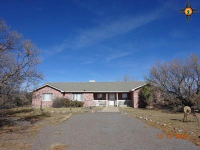 Deming NM Single Family Home For Sale: $220,000