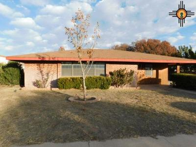 Deming Single Family Home For Sale: 1109 S Mallery St