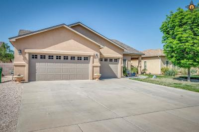 Hobbs Single Family Home For Sale: 2110 Saddle Club Drive