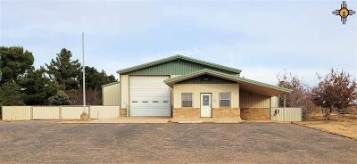 Curry County Commercial For Sale: 2800 E 7th