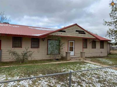 Texico Multi Family Home For Sale: 208 Ave D South