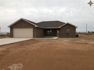 Portales NM Single Family Home For Sale: $205,000