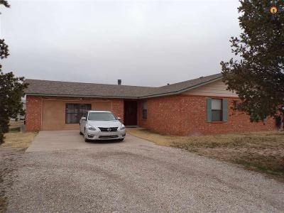 Artesia Single Family Home For Sale: R296 N Thirteenth St Rural