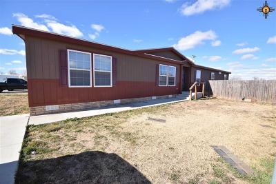 Portales Manufactured Home For Sale: 1633 E Brazos