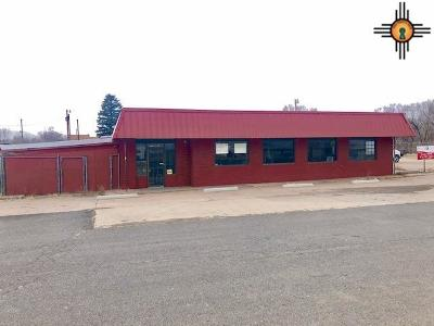 Commercial For Sale: 1222 S Second St
