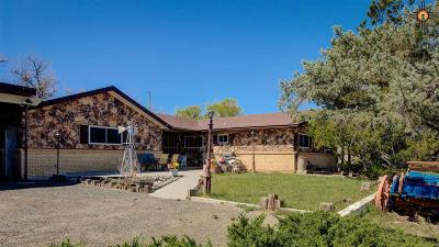 Gallup Single Family Home Under Contract-Don't Show: 400 Canoncito