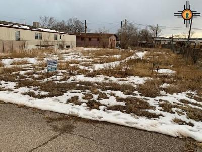 Residential Lots & Land For Sale: 1003 St Paul Ave
