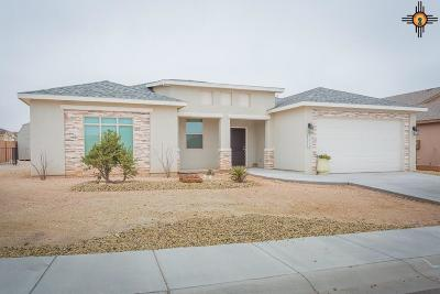 Carlsbad NM Single Family Home For Sale: $324,950