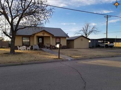 Lovington NM Single Family Home For Sale: $129,000