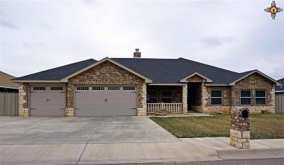 Clovis NM Single Family Home For Sale: $344,900