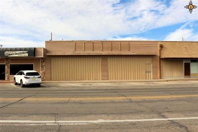 Commercial For Sale: 1314 N Main Street