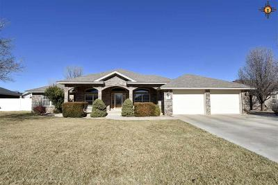Clovis NM Single Family Home For Sale: $349,900