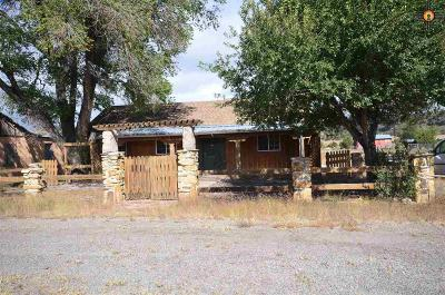 Catron County Single Family Home For Sale: 29 Old State Rte 60