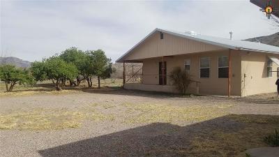 Sierra County Single Family Home For Sale: 324 Animas Creek
