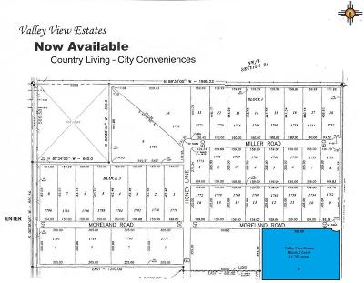Roosevelt County Residential Lots & Land For Sale: Block 2 Lot 6 Valley View Estates