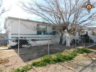 Lordsburg NM Manufactured Home For Sale: $17,500