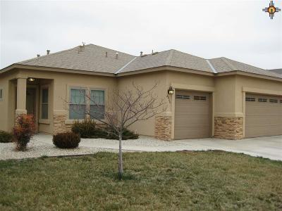Hobbs NM Single Family Home For Sale: $251,500