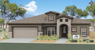 Hobbs Single Family Home Under Contract-Don't Show: 5221 W Dark Horse Road
