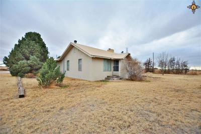 Roosevelt County Single Family Home For Sale: 2117 S Roosevelt Rd. 7