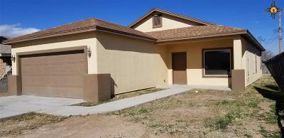 Carlsbad Single Family Home Under Contract-Don't Show: 1010 Jason