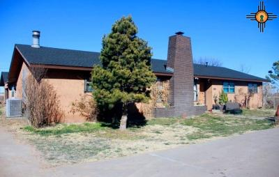 Clovis Single Family Home For Sale: 810 Cr 13