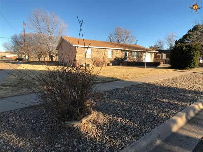 Single Family Home For Sale: 201 Merrill