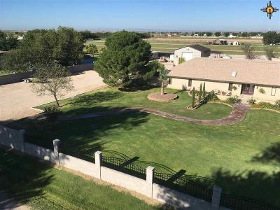 Carlsbad Single Family Home For Sale: 6005 Grandi Road