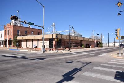 Roosevelt County Commercial For Sale: 101 E 1st
