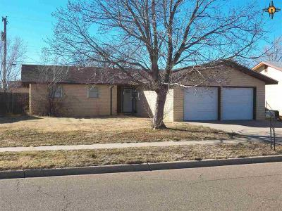 Single Family Home For Sale: 3204 Mandel Circle