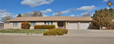 Portales Single Family Home For Sale: 2102 Boxwood