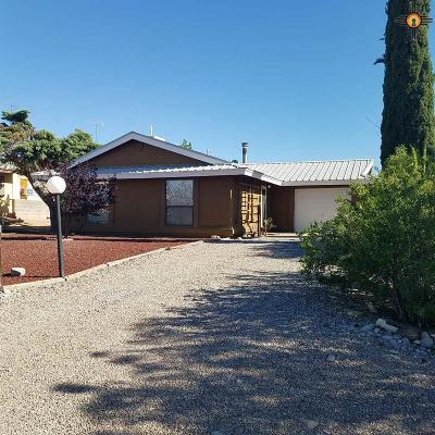 Sierra County Single Family Home For Sale: 107 Huron