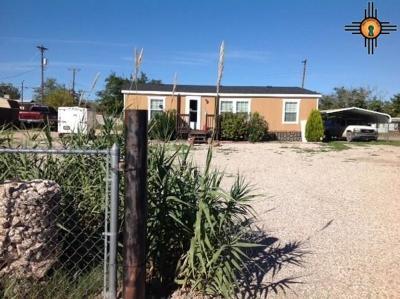 Carlsbad Single Family Home For Sale: 1110 W Stevens