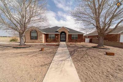 Portales Single Family Home For Sale: 1386 Oakwood Drive