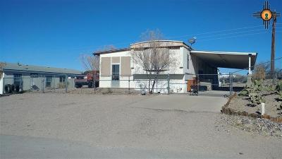 Elephant Butte NM Manufactured Home For Sale: $99,500