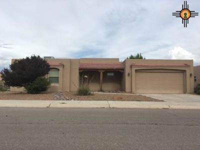 Deming Single Family Home For Sale: 1309 S Tularosa St.