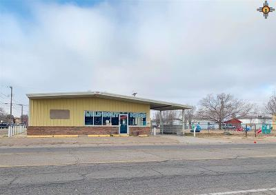 Roosevelt County Commercial For Sale: 522 S Ave C