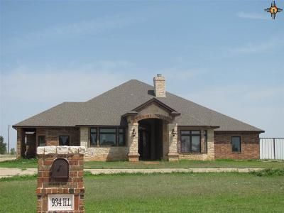 Single Family Home For Sale: 934 H.l. Ave