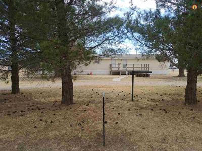 Hobbs NM Single Family Home For Sale: $119,000