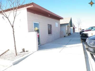 Commercial For Sale: 321 S Main