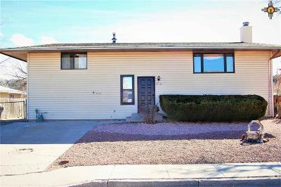 Gallup Single Family Home For Sale: 3710 Dulce Ct
