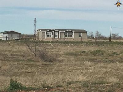 Lovington Single Family Home For Sale: 88 W Leman