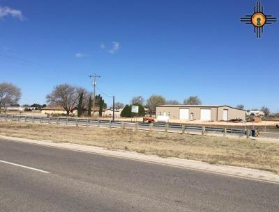 Commercial For Sale: 5326 E Seminole Hwy