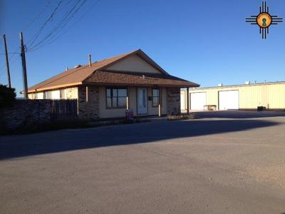 Commercial For Sale: 3506 West County Road