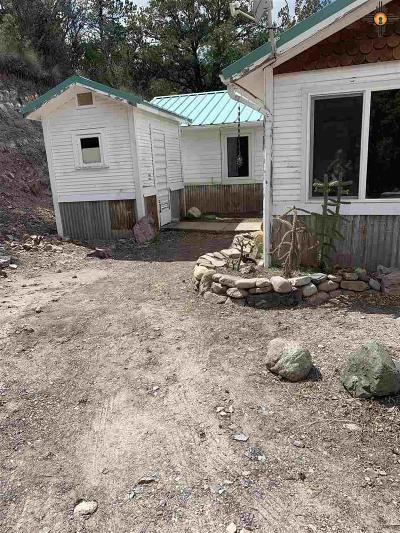 Sierra County Single Family Home For Sale: 4 Virtue