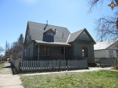 Single Family Home For Sale: 1103 Lincoln Ave