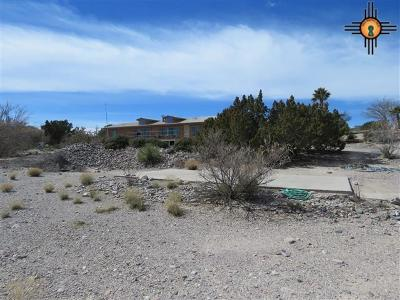 Elephant Butte NM Manufactured Home For Sale: $179,000
