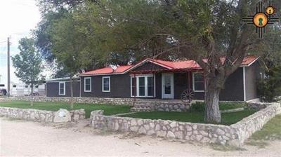 Lovington Single Family Home Under Contract-Don't Show: 1601 Donna Rd