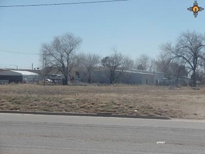 Roosevelt County Residential Lots & Land For Sale: 202 E 18th Street