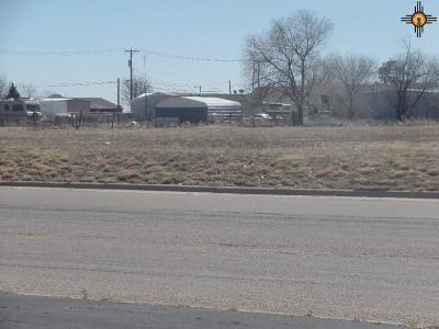 Portales Residential Lots & Land For Sale: 200 E 18th Street